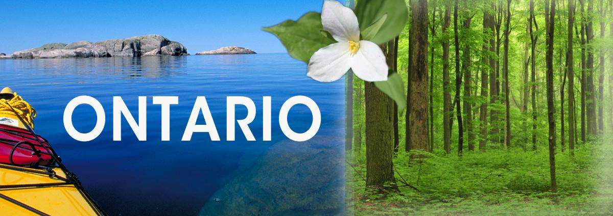 Ontario banner graphic