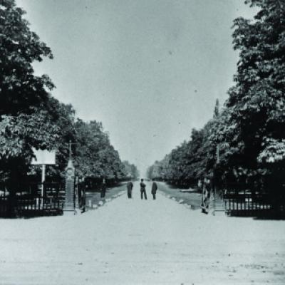 Vue sur l'avenue College (maintenant l'avenue University), Toronto, vers 1867