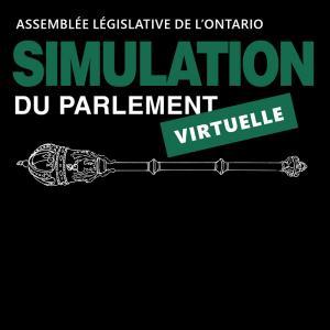 Simulation du Parlement virtuelle image