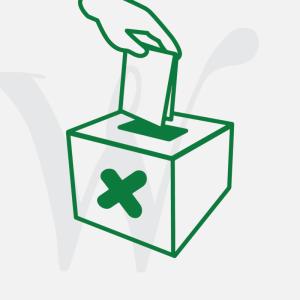 Women's Vote image